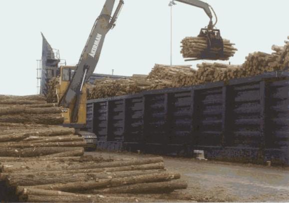 Holzfeuchtigkeitsmessgerät: Hier ist der Einsatz sinnvoll.