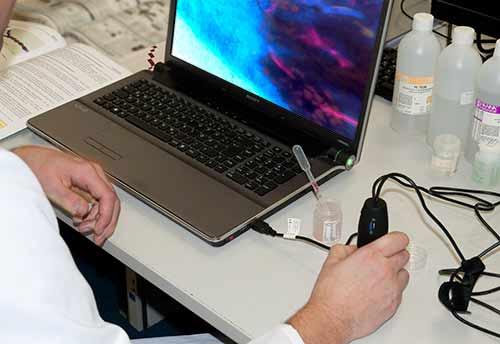 Das UV-USB-Mikroskop PCE-MM 200UV bei einfachen Laboranwendungen