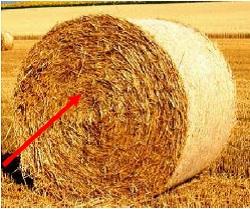 Hier ein Stroh-Rundballen, worein Sie den Viehfutter-Feuchtemesser einstechen können