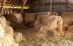 Straw can be checked by hay moisture meter.