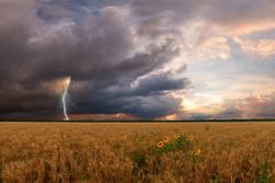 Estacion meteorologica para agricultura
