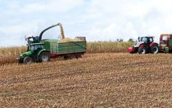 El medidor de pH del suelo PCE-PH20S en uso en la agricultura.