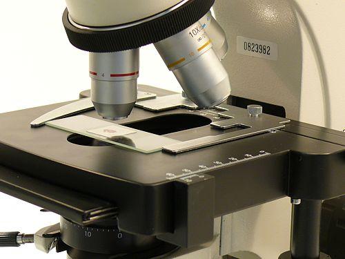 Objetivos del microscopio