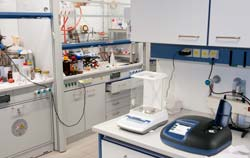 Laboratory balance in use at research laboratory medicines.