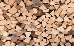 Holzfeuchtemessgerät bei der Feuchtemessung bei Brennholz.