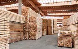 Holzfeuchtemessgerät in der Anwendung in der Holzindustrie bei Brettern.