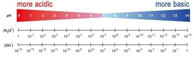 pH Metre pH skalası