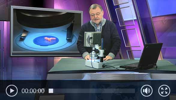 Vídeo sobre como usar o microscópio