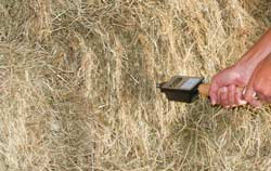 Hay Moisture Meter in a application on hay.